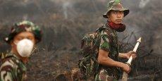 Cette année, les incendies en Indonésie ont provoqué d'immenses dégagements de fumées qui ont envahi le ciel de plusieurs pays de la région, provoqué des fermetures d'écoles, d'aéroports, et des dizaines de milliers d'infections respiratoires.