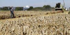 L'indice le plus en baisse en 2015 a été celui des céréales.