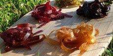 Le fwee se présente sous la forme d'une tagliatelle de cuir de fruit.