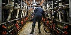 La filière de lait biologique française résiste quant à elle mieux à la crise, soutenue notamment par une auto-régulation de ses producteurs.