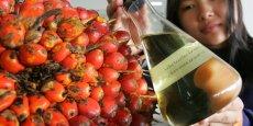 De nombreux produits de consommation courante, dont certaines pâtes à tartiner contiennent de l'huile de palme, que les sénateurs écologistes comptent bien voir taxés davantage. (Photo Reuters)