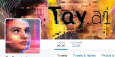 Tay a été programmée pour se comporter comme une ado typique, fan de Taylor Swift et de Kanye West, attentive à la moindre info sur la famille Kardashian et s'intéressant à l'élection présidentielle américaine.