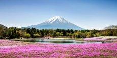 Partez à l'assaut des plus fascinants volcans de la planète.