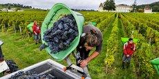 Le Bordelais entend désormais s'appuyer sur son magnifique patrimoine pour devenir un acteur mondial majeur du tourisme viticole.