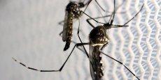 Sanofi avait déjà annoncé début juillet la signature d'un accord de collaboration avec le Walter Reed Army Institute of Research (WRAIR), un organisme du département américain de la Défense, pour le codéveloppement d'un vaccin contre le Zika.
