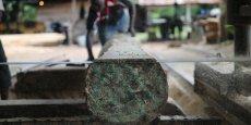 Comme le diamant, le trafic de bois a largement financé les guerres civiles qui ont secoué le Liberia entre 1990 et 2000 ou encore les mouvements séparatistes de Casamance