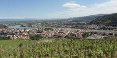 Près de 300 viticulteurs, implantés en Drôme et en Ardèche, adhèrent à la Cave de Tain.