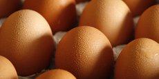 La grippe aviaire a conduit à abattage de nombreuses poules pondeuses.