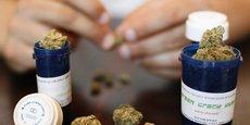 La loi n'autorise pas les patients à cultiver leur propre cannabis et elle rappelle qu'une telle pratique est contraire à la loi sur les stupéfiants en vigueur en Allemagne, où la possession de cannabis est interdite.