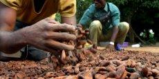 La production de cacao au Ghana, deuxième à l'échelle mondiale après celle de la Côte d'Ivoire, est d'environ 800 000 tonnes par an.