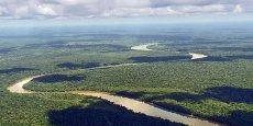 Le bassin du fleuve Congo a été au centre des échanges.