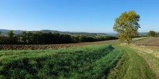 Le Smart grid rural  : véritable innovation en Occitanie.