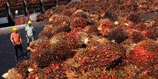 Une usine de transformation d'huile de palme à Sepang, en Malaisie.