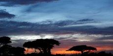 UNE CÉLÈBRE PROTECTRICE DE LA NATURE BLESSÉE PAR BALLE AU KENYA