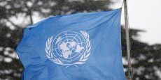 L'ONU HORRIFIÉE PAR UNE VIDÉO DU MEURTRE DE DEUX EXPERTS EN RDC