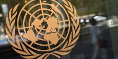 L'évaluation du coût de la vie à Genève est spectaculairement faux, s'est indigné Ian Richards, secrétaire exécutif du Conseil de coordination des associations de personnel de l'ONU.