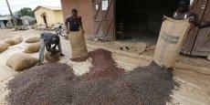 Le Ghana et la Côte d'Ivoire produisent, à eux seuls, quelque 60 % du cacao mondial.