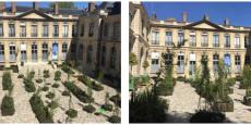 Un jardin éphémère dans la cour de l'Hôtel de Roquelaure, ministère de l'Environnement