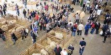 Le public était au rendez-vous pour le Salon de l'agriculture Nouvelle-Aquitaine qui a refermé ses portes hier soir.