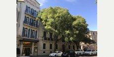 Paris Inn Group va investir 25 M€ pour rénover l'hôtel 4*