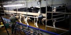 Les producteurs de lait français continuent à voir leur lait rémunéré en-dessous de leurs coûts de production, car l'Europe détient un stock de 350.000 tonnes de poudre de lait, ce qui pèse sur les prix.