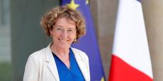 Muriel Penicaud a présenté, ce mercredi 28 juin, le projet de loi d'habilitation à prendre par ordonnances les mesures pour le renforcement du dialogue social.