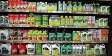 Des pesticides dans un rayon de magasin dans le Val-de-Marne, en juin 2015.