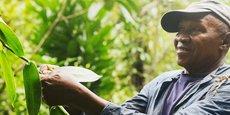 Le Fonds veut promouvoir une chaîne d'approvisionnement plus durable pour 3000 fermes familiales.