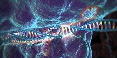 C'est une Française, Emmanuelle Charpentier, qui a développé le couteau suisse de l'ADN, le fameux CRISPR-Cas9 qui va révolutionner la génétique.