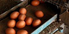 La Commission européenne a demandé la tenue d'une réunion au niveau ministériel pour discuter des conséquences de cette crise qui a nécessité le retrait des rayons de millions d'œufs contaminés par l'insecticide potentiellement dangereux dans 15 pays membres de l'UE, ainsi qu'en Suisse et à Hong Kong.