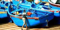 Au Maroc, pas moins de 120 000 emplois ont été perdus entre 2015 et 2016 dans les secteurs de l'agriculture, des forêts et de la pêche.
