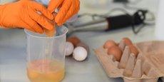 La contamination de dizaines de millions d'œufs est apparue au grand jour début août et a concerné des produits vendus dans presque toute l'Union européenne (UE).