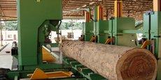 La Banque mondiale préconise au gouvernement congolais de mettre davantage l'accent sur le secteur agricole et la filière du bois.