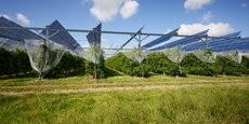 Focus sur le concept de l'agrivoltaïque avec Pierre Guerrier, directeur du développement de la société Sun'R