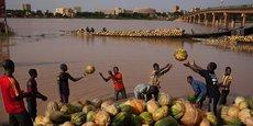 Commerce de courges sur le fleuve de Niger à Niamey, la capitale du Niger.