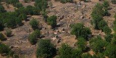 UN MILLIARD DE DOLLARS POUR LUTTER CONTRE BOKO HARAM AU NIGERIA