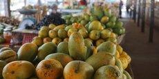 La région du Grand Bassam est l'une des principales zones de culture de la mangue et de l'ananas en Côte d'Ivoire.