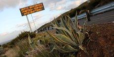 Deuxième agglomération d'Afrique du Sud, le Cap est frappée par sa pire sécheresse depuis un siècle.
