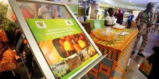 En Côte d'Ivoire, la modernisation des filières agricoles est aujourd'hui un impératif, puisque le succès de l'économie du pays repose essentiellement sur le développement du secteur primaire. Ici, un stand au Salon international des équipements et technologies de transformation de l'Anacarde (SIETTA) qui s'est tenu du 17 au 19 novembre 2016 au Palais de la culture à Abidjan.
