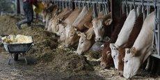 Les éleveurs n'ont sûrement pas fini de protester contre la modification de l'indemnité compensatoire handicap naturel (ICHN)
