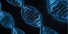SeqOne développe un outil d'analyse des données génomiques