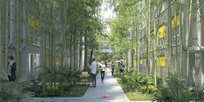 La Cité numérique va se déployer sur 25.000 m2 dans le quartier des Terres Neuves à Bègles