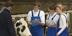 L'enseignement agricole forme actuellement quelque 210 000 élèves.