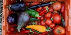 Les partenaires de l'opération comprennent des ONG comme Action contre la Faim et la Ligue contre l'Obésité, des instituts de recherche comme l'Inra, des startups comme Too Good To Go (active contre le gaspillage alimentaire) et Jumini's (qui produit des insectes comestibles), mais aussi des colosses de l'agro-alimentaire tels que Système U, Bonduelle, Fleury Michon ou Danone.