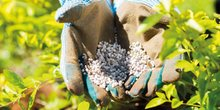 Agriculture engrais agriculteurs