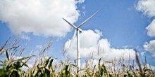 éolienne énergie renouvelable