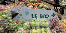 De plus en plus de producteurs convertis au bio en france