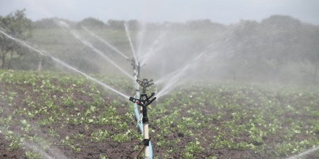 Eau irrigation