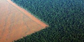 Une image des ravages de la déforestation de la forêt primaire d'Amazonie conduite avec l'approbation des autorités brésiliennes afin de faire place à des cultures de soja dont le Brésil est le deuxième plus grand producteur mondial, après les Etats-Unis et devant l'Argentine. (Vue aérienne prise dans le Mato Grosso, le 4 octobre 2015)