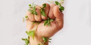 transition écologique, écologie, environnement